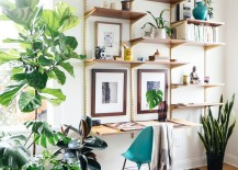 Office space with unique shelves that almost mimic trees