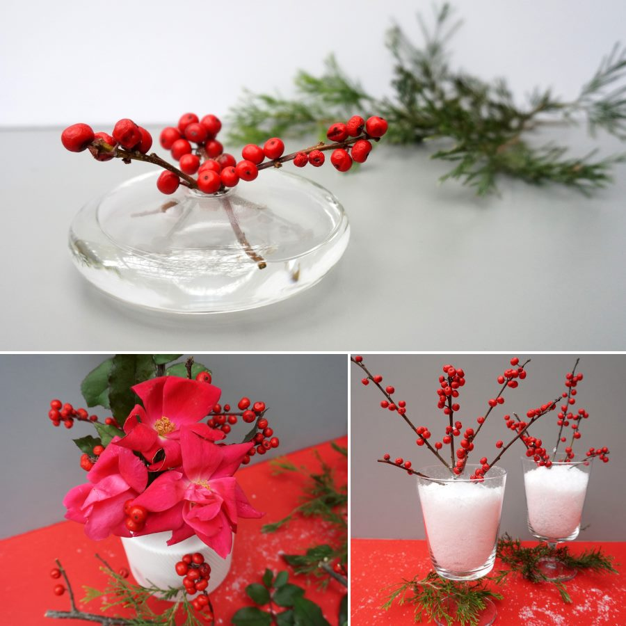 Red berries three ways for the holiday table