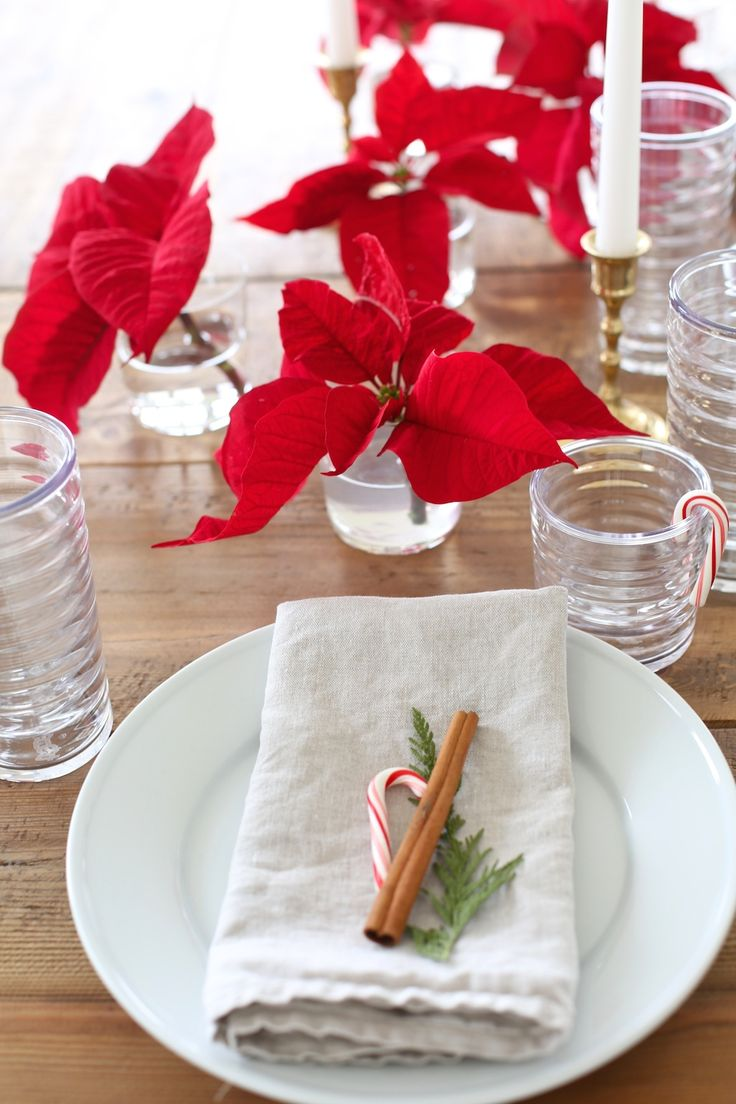 Single poinsettia flowers in small glasses of water