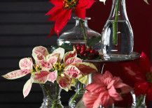 Snipped poinsettias in glass vases bring a new look to this classic holiday flower