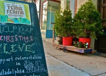 Buying live Christmas trees allows you to replant them in the garden