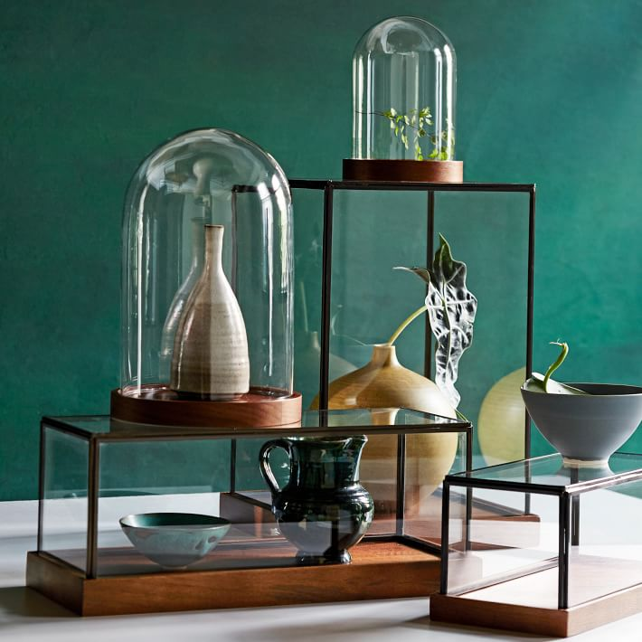 Display cloches from West Elm