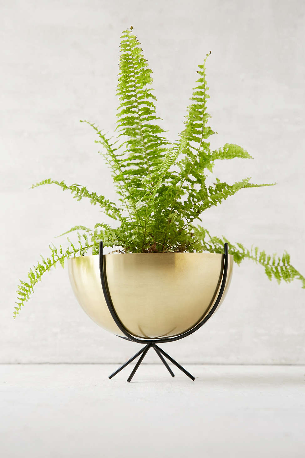 Metal bowl planter from Urban Outfitters