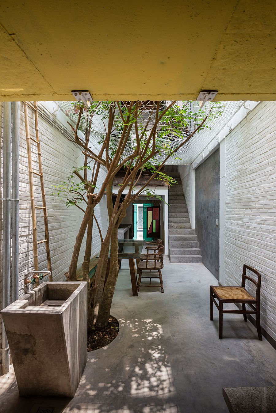 Natural greenery becomes an integral part of the interior