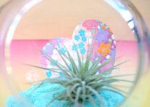 Origami paper heart air plant terrarium