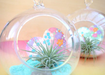 Paper heart air plant terrariums for Valentine's Day