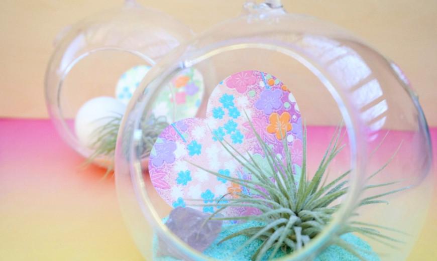 Valentine's Day DIY: A Pastel Air Plant Terrarium