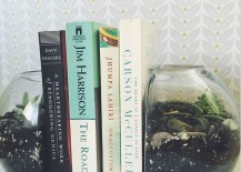 Terrarium bookends 217x155 15 Ridiculously Unique Ideas for Bookends