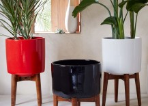 Mid Century planters from West Elm 217x155 The New Beachy: Modern Tropical Decor on the Rise