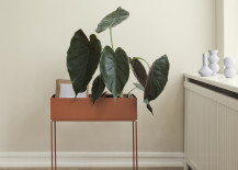 Plant-box-from-ferm-LIVING-217x155