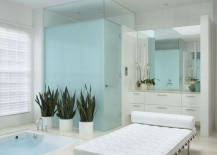 White-bathroom-with-a-spa-vibe-217x155