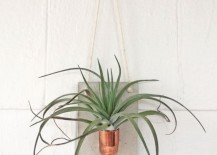Air-plant-holder-from-Etsy-shop-Etta-Odie-217x155