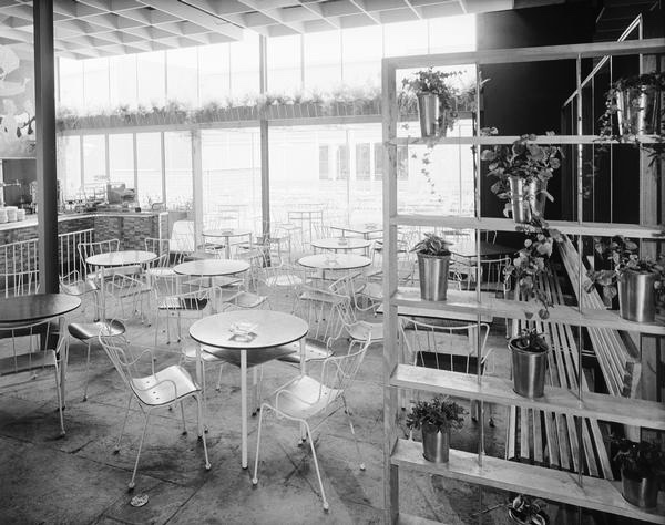 Antelope chairs at the 1951 Festival of Britain
