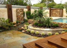 Barrel cactus in a landscaped yard with a pool 217x155 5 Low Maintenance Plants for Landscaping