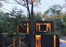 Green roof lets the home blend in with its forested backdrop 217x155 Nifty Modern House in Wisconsin Blends in with Dense Forest Landscape