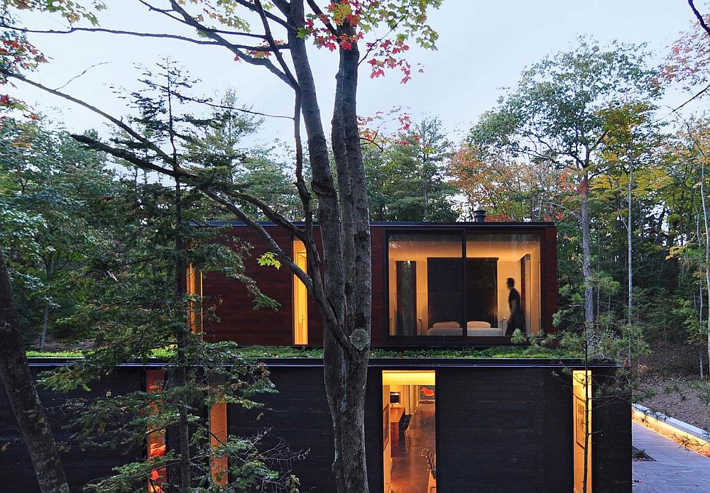 Green roof lets the home blend in with its forested backdrop