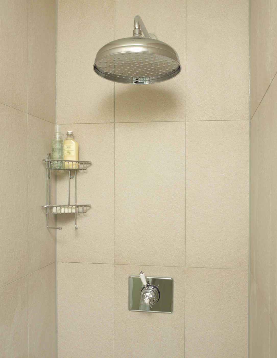 Large shower head in a tiled shower