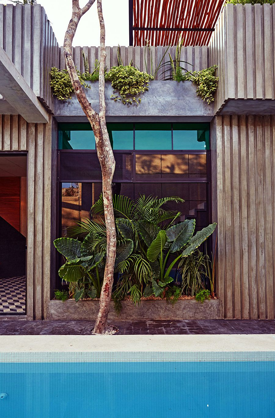 Natural greenery is intertwined with the steely concrete structure of the home