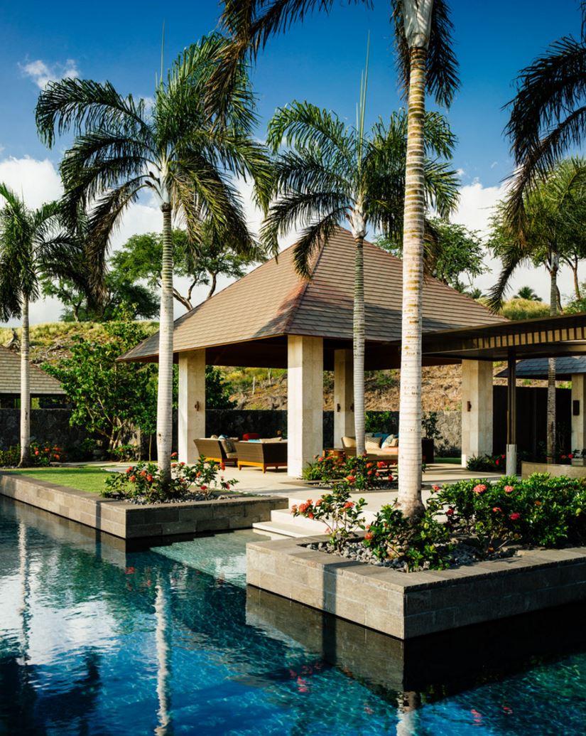 Poolside ixora in a tropical yard