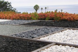 Red succulents unify a variety of gravel selections