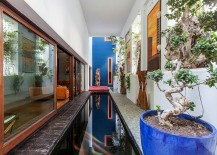 Slim, lap pool brings the charm of tropical landscape indoors