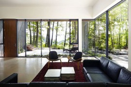 Stunning views of the natural canopy around the house from the second living room