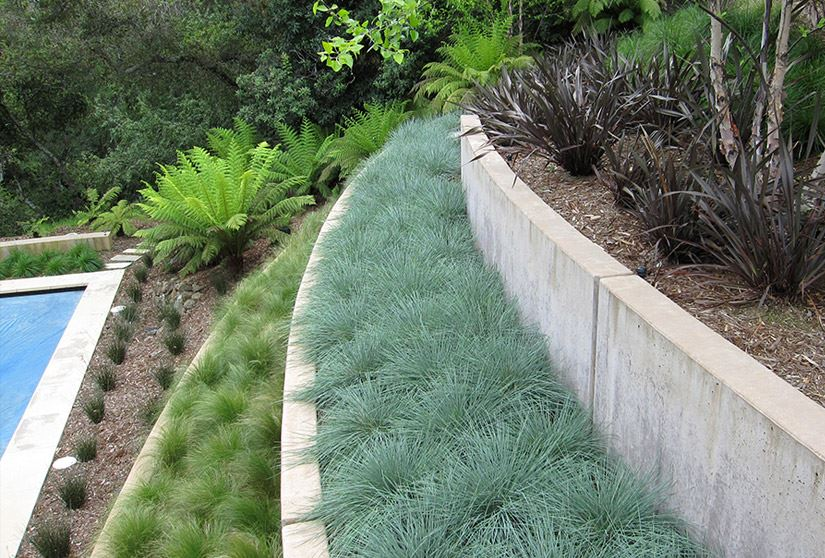 Terraced garden organized by plant type