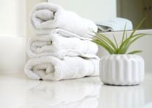White washcloths and an air plant