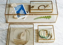 Glass-and-brass-shadow-boxes-from-West-Elm-217x155