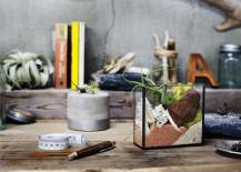 Terrarium kit from Urban Green Makers