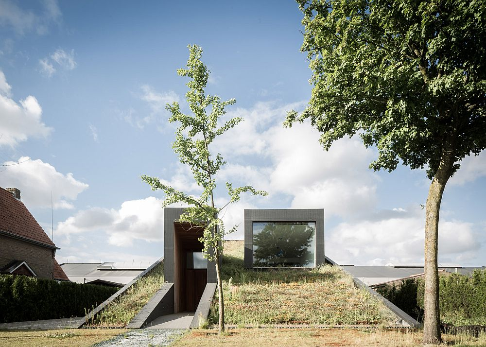 Two distinct volumes pop up from the ground to create the entrance and dining space