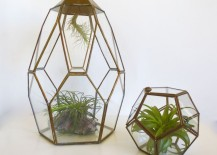 Vintage brass and glass terrariums from Etsy shop Hot Cool Vintage
