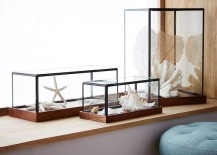 Wood-and-glass-display-cases-from-West-Elm-217x155