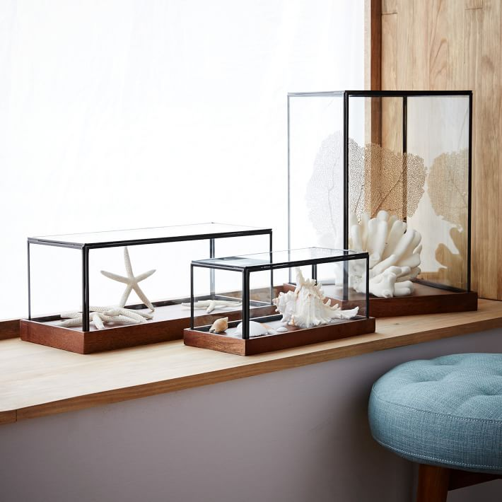 Wood and glass display cases from West Elm