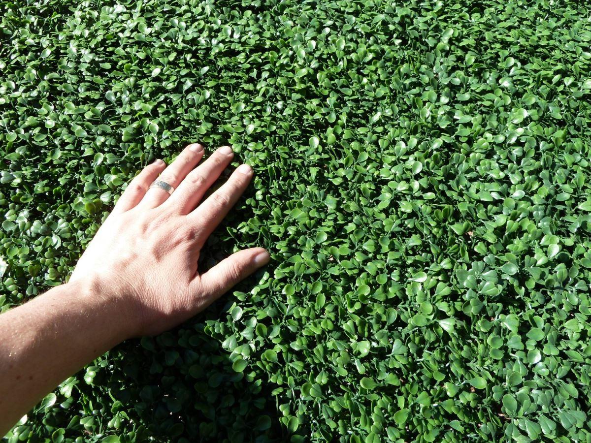 Artificial boxwood greenery from Ranka