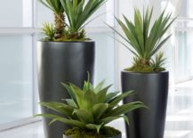 faux plants: yes or naux?