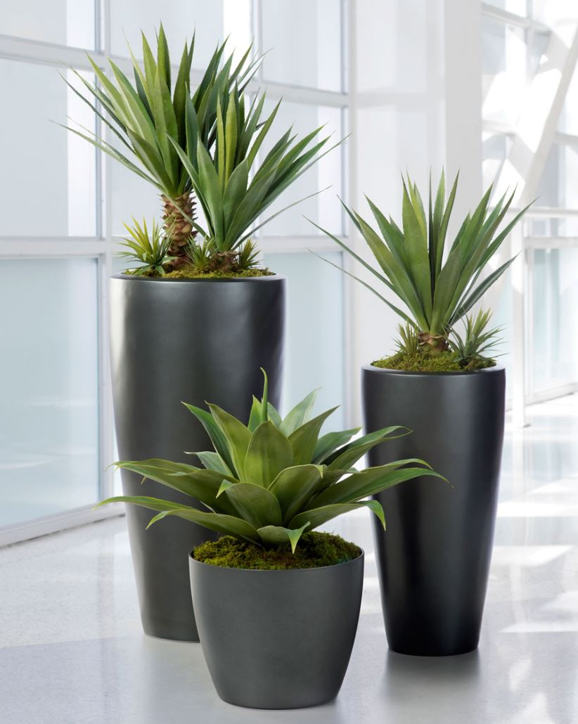 Faux Plants Yes Or Naux