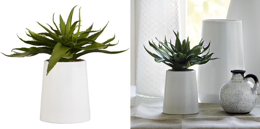 Faux aloe plant from CB2