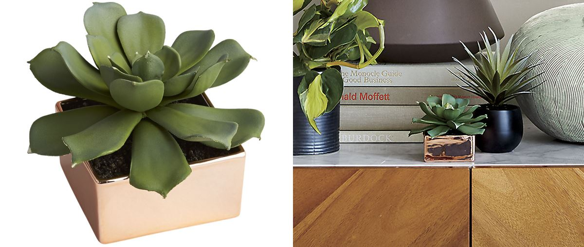 Faux potted succulent from CB2
