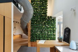 Wow Factor: Playful Kiev Apartment with Giant Slide and Green Wall