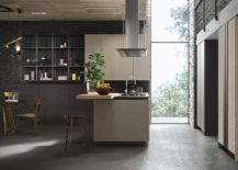 Modular-shelving-units-and-cabinets-create-a-fashionable-and-versatile-minimal-kitchen-217x155