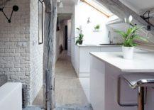 Rustic contemporary apartment renovation in Paris