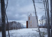 Tall cabin offers amazing views of both the forest and the coastline