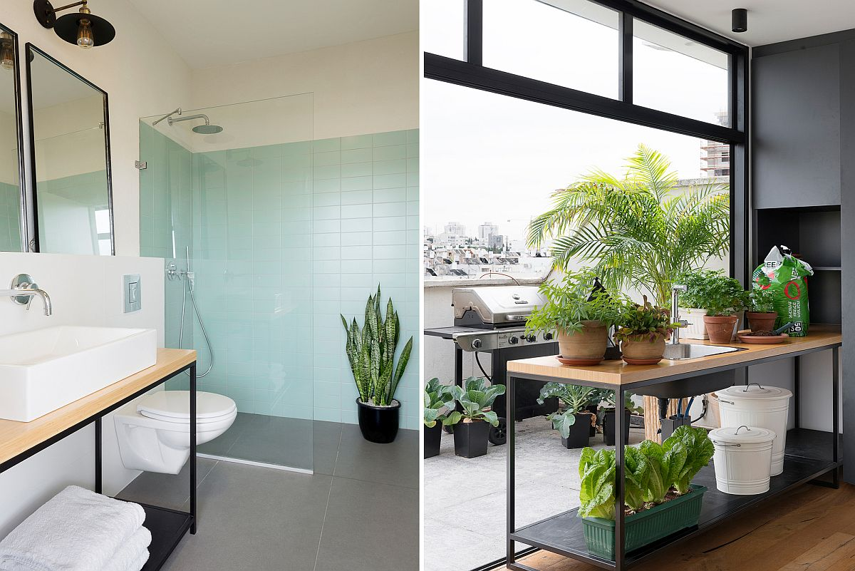 Bathroom and rooftop level garden at the stylish Israeli home