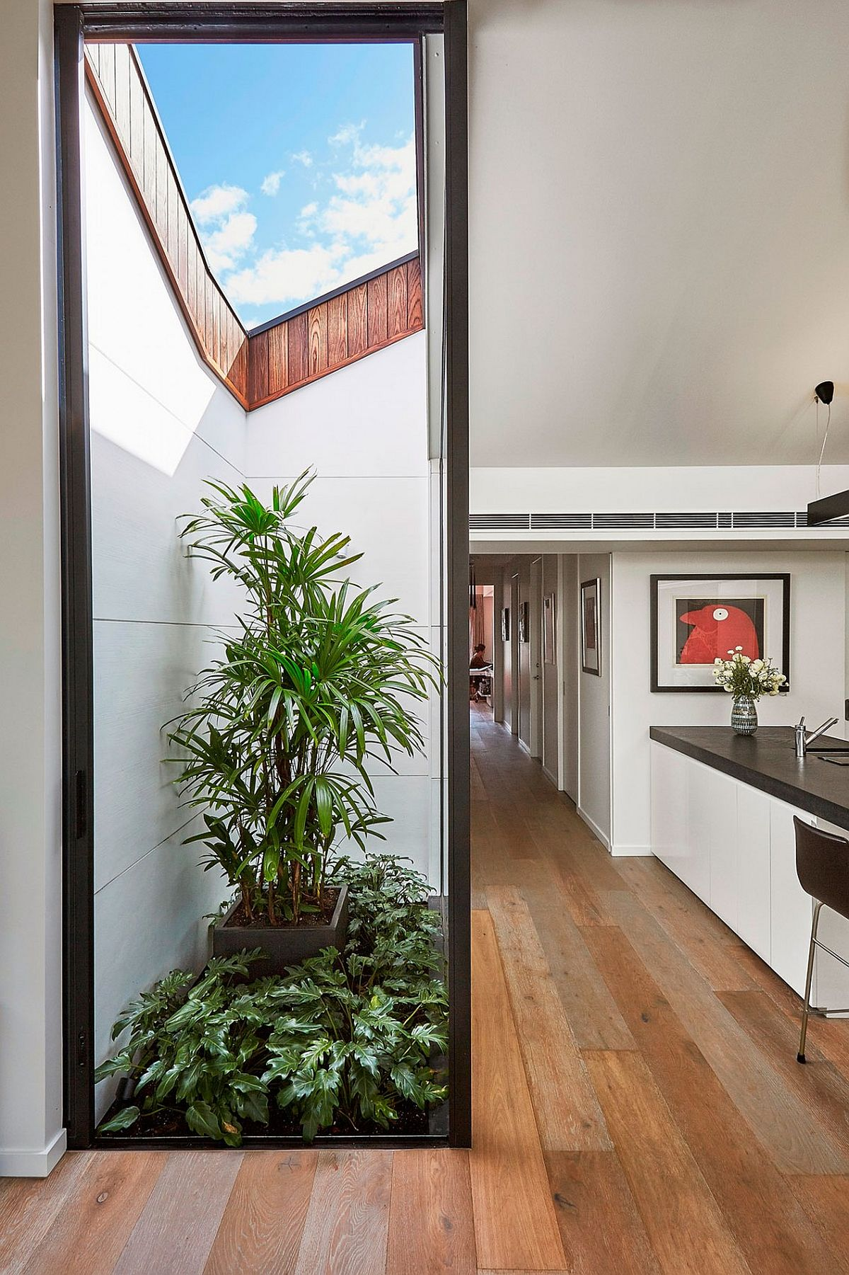 Beautiful indoor courtyard adds freshness and light to the living area