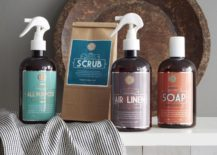 Cleaning-supplies-from-West-Elm-217x155