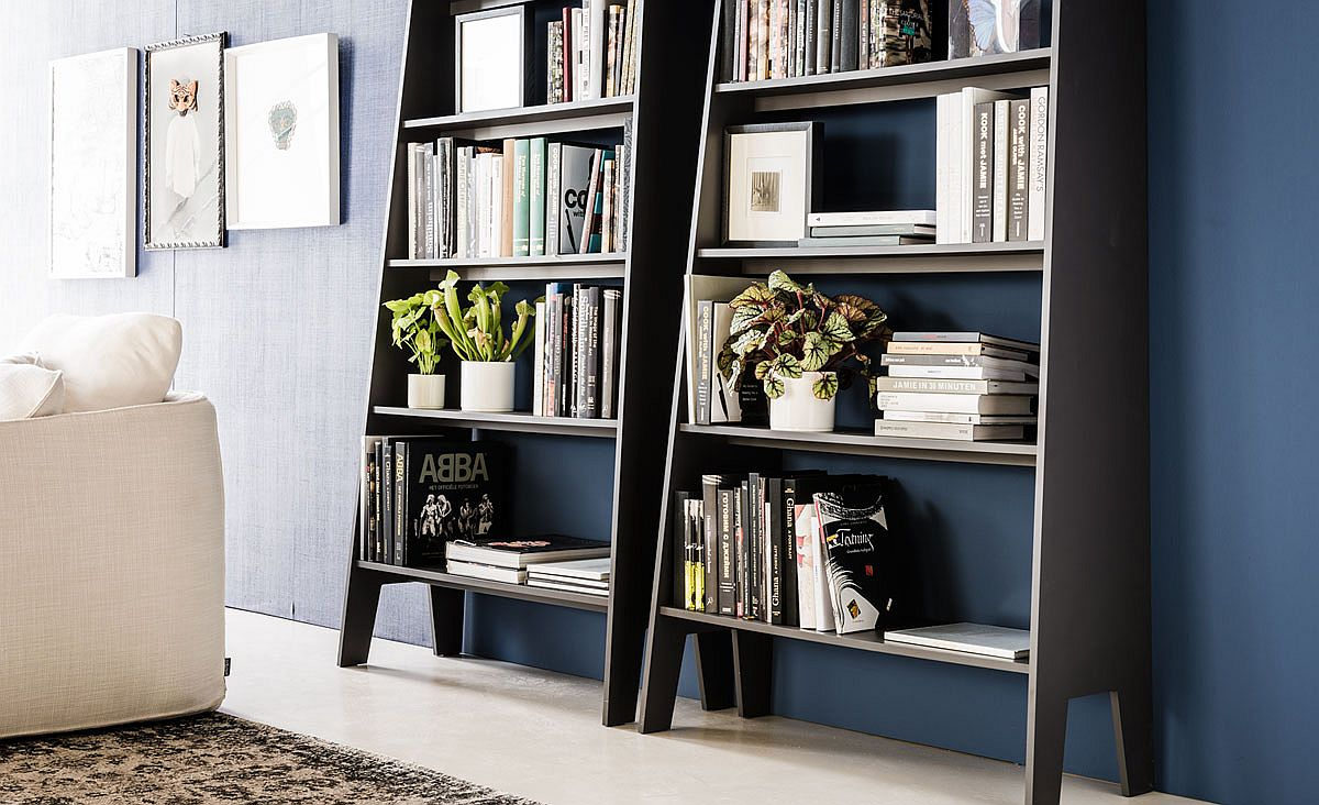 Deceptively spacious and sleek bookshelves with ladder design