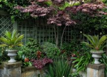 Garden oasis featuring a variety of plant life