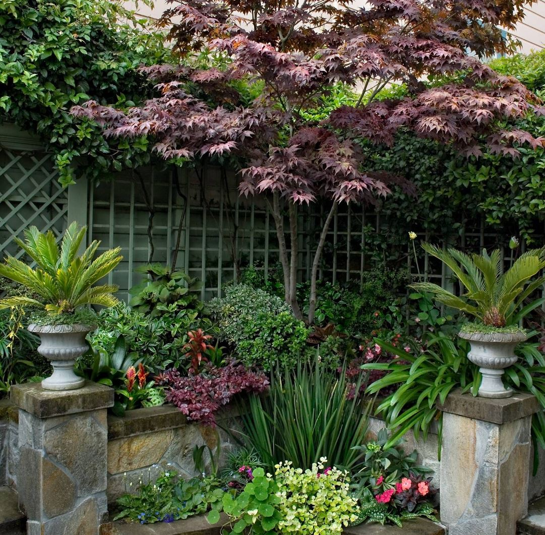Transform your yard into a garden oasis - How to create a small outdoor oasis ...