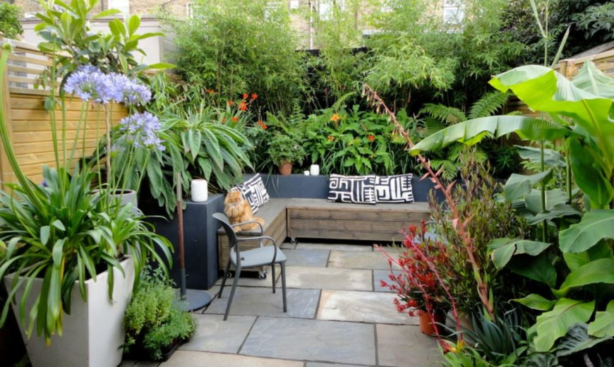 Transform Your Yard into a Garden Oasis